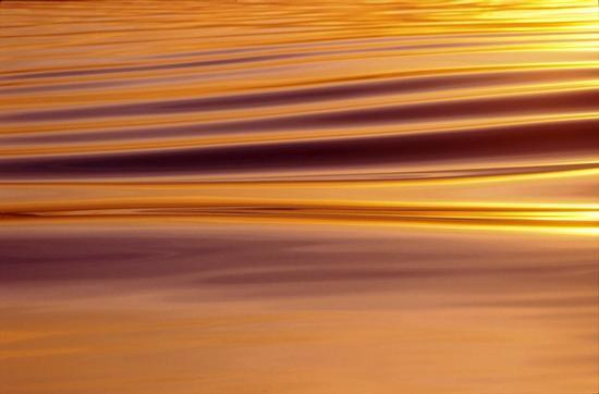 Sul lago dorato - Lazise (3256 clic)