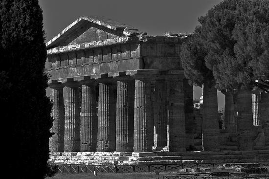 Paestum (3283 clic)