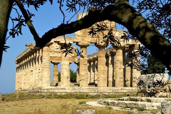 paestum area archeologica (743 clic)