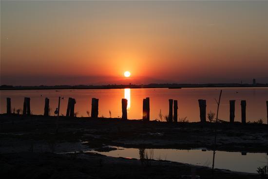 mazzorbetto laguna veneziana (1007 clic)