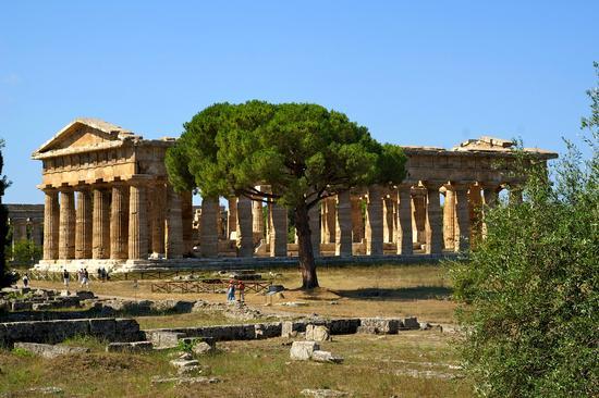 Tempio a paestum (861 clic)