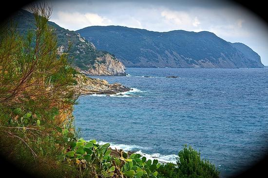 isola d'elba  (586 clic)