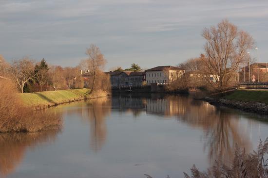 il fiume sile  (944 clic)