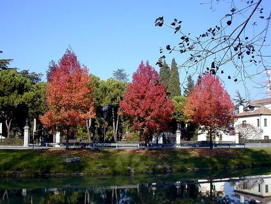 riviera del brenta - Dolo (2952 clic)