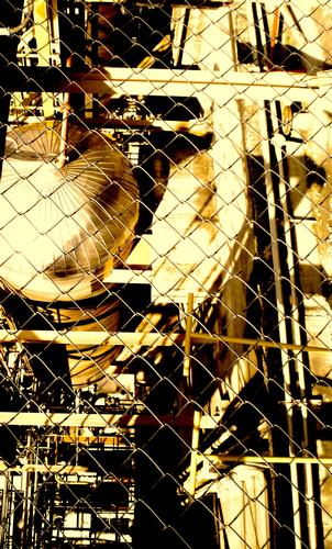oro quel che luccica - Marghera (2157 clic)