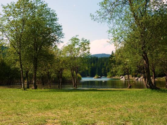 fusine lago superiore (1229 clic)