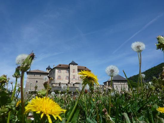 Castel Thun - Mezzocorona (546 clic)