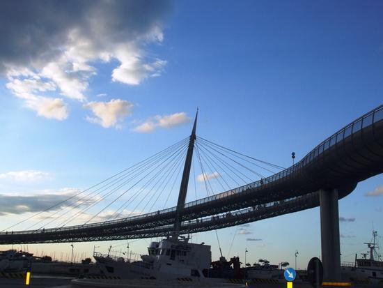 Il Ponte del Mare_Arch. Walter Pichler - Pescara (3510 clic)