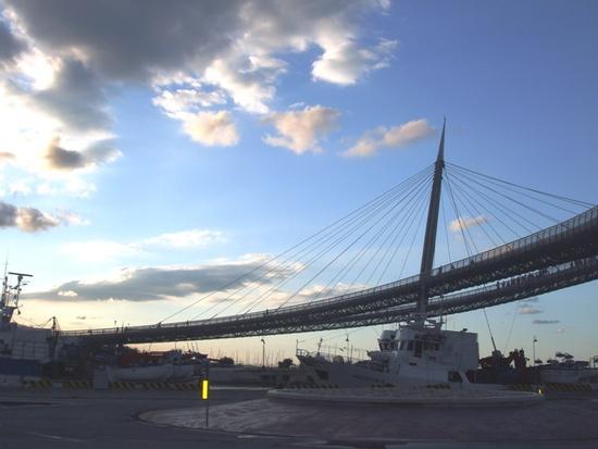 Il Ponte del Mare - Pescara (3749 clic)
