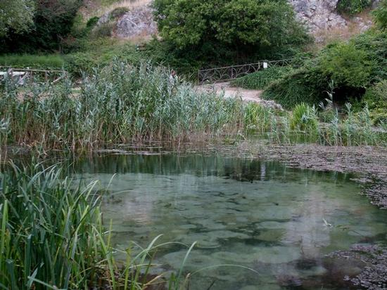 Sorgenti del fiume Pescara_Riserva Naturale - Popoli (2499 clic)