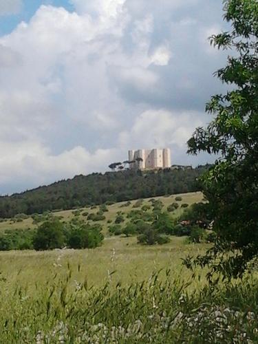 Castel del  Monte - Andria (794 clic)