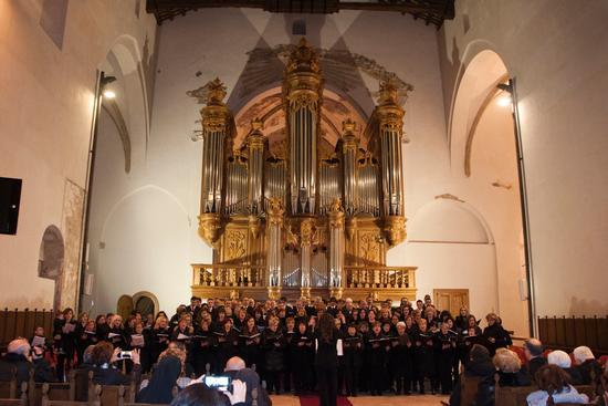 Organo Monumentale. - Rieti (482 clic)