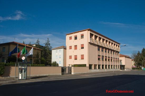 Camera Commercio Rieti (869 clic)