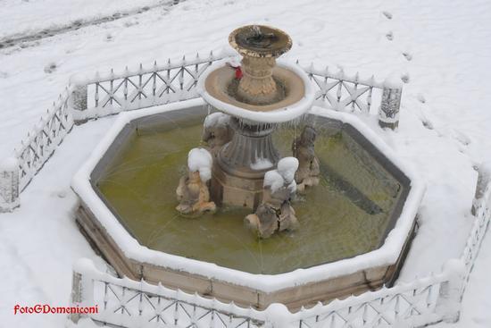 Rieti Giorno e Notte Fontana dei Delfini.. (1196 clic)