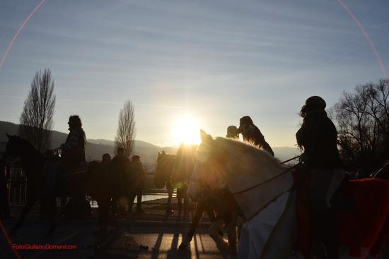 Cavalli infiocchettati  - Rieti (1296 clic)