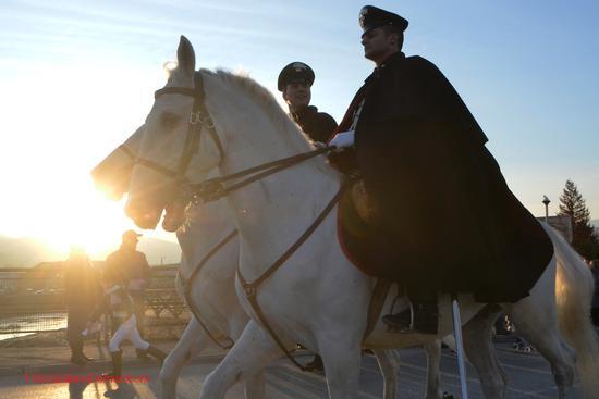 Cavalli infiocchettati  - Rieti (1104 clic)