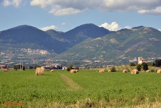 Lungo il Cammino........ di Francesco - Rieti (832 clic)