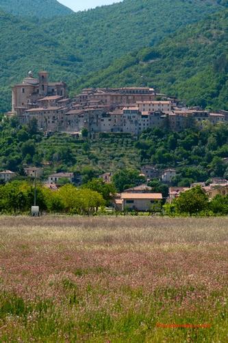 Sulle orme di San Francesco - Contigliano (667 clic)