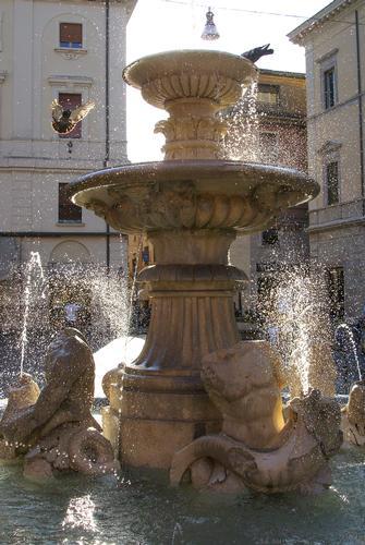 Fontana dei Delfini - Rieti (2543 clic)