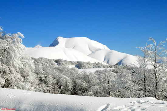 Monte Elefante TERMINILLO - Rieti (2718 clic)