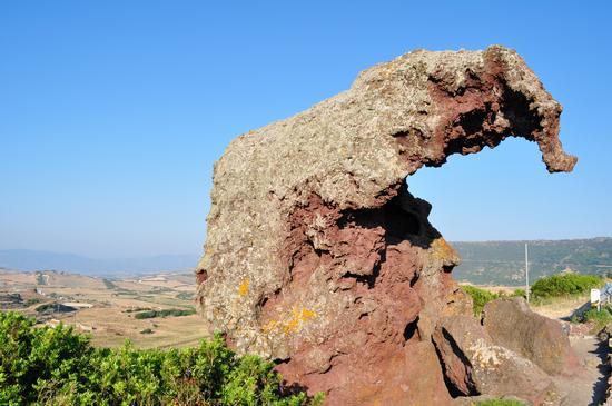 Roccia con la forma di elefante  - Platamona (2959 clic)