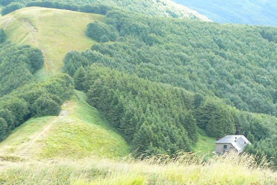 panorama del rifugio Portafranca - ORSIGNA - inserita il 24-Aug-10