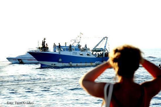 processione a mare di S.Cristina - Gallipoli (2159 clic)