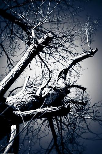Death incoming - Siena (882 clic)