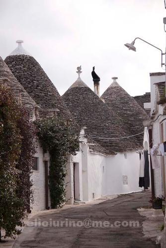 trulli - Alberobello (2904 clic)