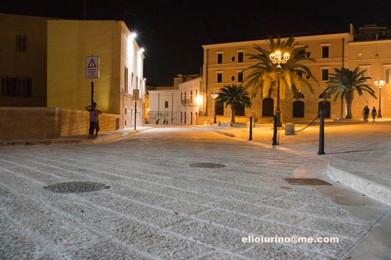 Trani, vista notturna (3315 clic)