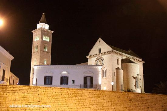 Trani, vista notturna (3665 clic)