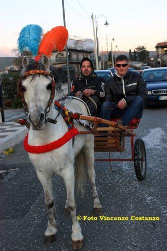 Carnevale a Maniace 12 (2147 clic)
