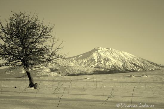 Etna - Maniace (2685 clic)