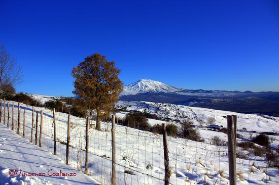 Etna vista da Maniace (2807 clic)