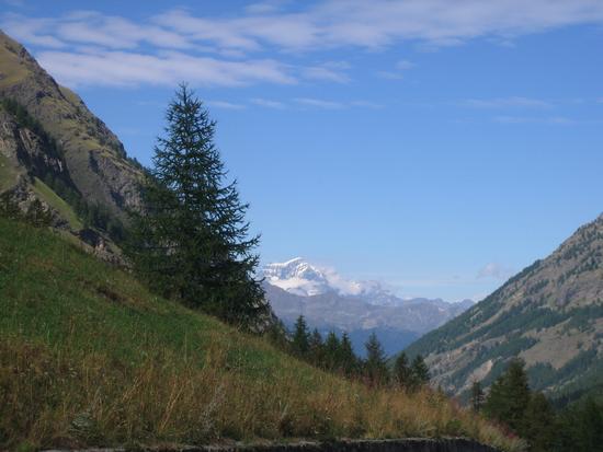 Monte Bianco - Rhemes (3564 clic)