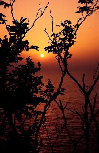 Tramonto sul Mar Tirreno - San lucido (838 clic)