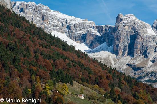 autunno a Dengolo e sullo sfondo il Brenta - San lorenzo in banale (598 clic)