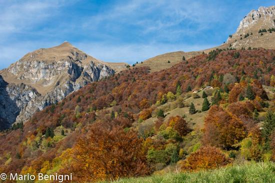 autunno a Jon  ( San Lorenzo Dorsino) - San lorenzo in banale (716 clic)