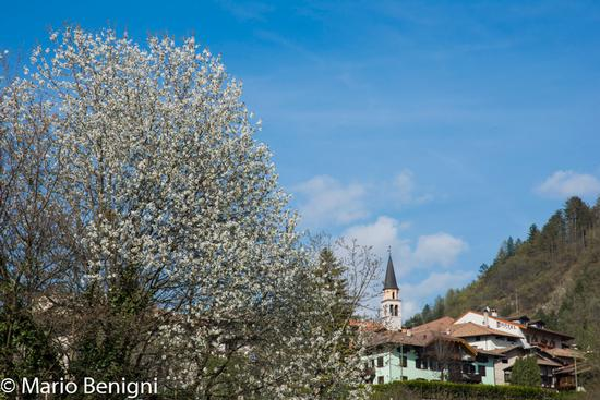 scorcio di San Lorenzo - San lorenzo in banale (540 clic)