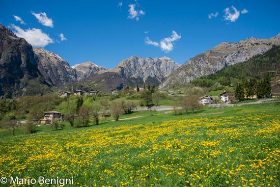 Scorcio di San Lorenzo  - San lorenzo in banale (435 clic)
