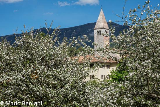Chiesa di Tavodo nel comune di San Lorenzo Dorsino - San lorenzo in banale (594 clic)