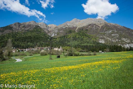 Primavera e il paese di Seo - Stenico (657 clic)
