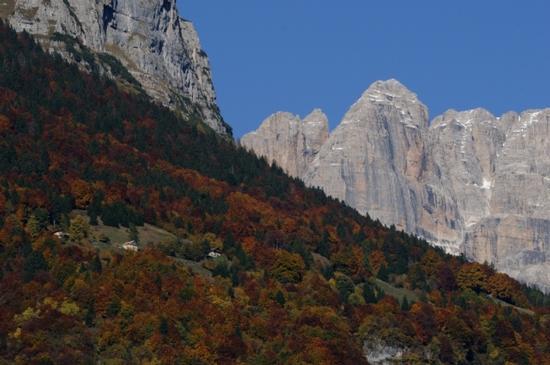 autunno a Dengolo e il brenta - San lorenzo in banale (2364 clic)