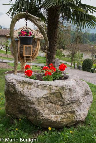 Scorci di Berghi - San lorenzo in banale (849 clic)