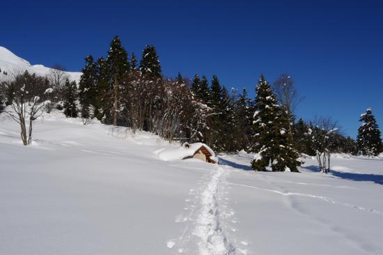 baita d'inverno in prada  - San lorenzo in banale (2347 clic)