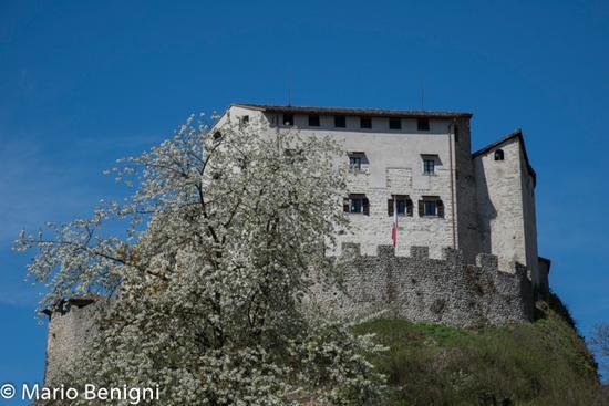 Castel Stenico (642 clic)