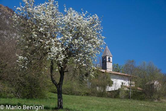 Chiesa di Seo - Stenico (856 clic)