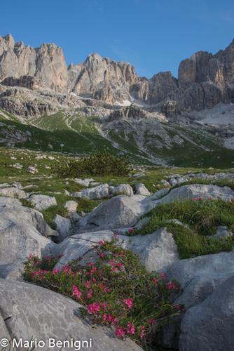 Val Ambiez  nei pressi di San Lorenzo in Banale (728 clic)