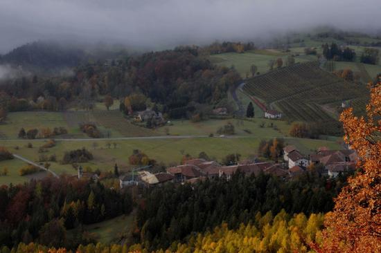 Seo frazione di Stenico (2458 clic)