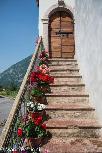 estate nella frazione Berghi - San lorenzo in banale (775 clic)